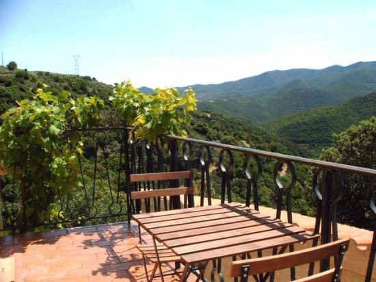 gite a vendre Languedoc-Roussillon (Felluns)