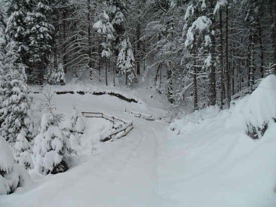 schm-locations-saisonnieres-7