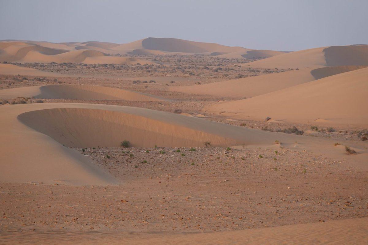 Camping à vendre au Maroc : Camping à vendre au Maroc. Le Camp Bédouin est un camping mythique sur la route de Dakhla et de l'Afrique de l'Ouest
